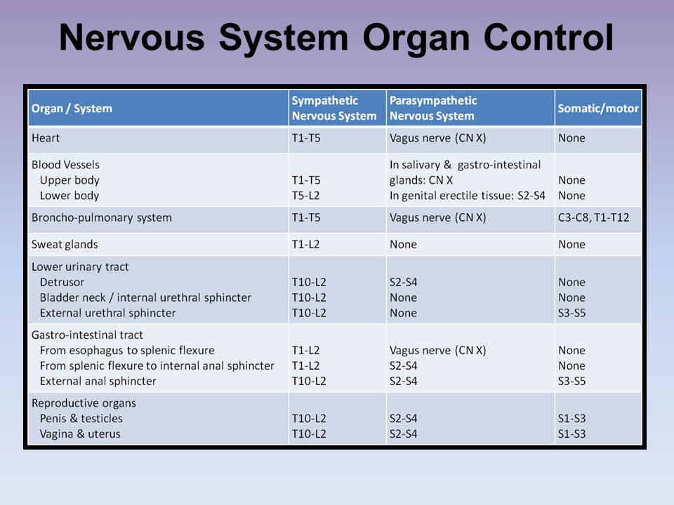 Nervous System Organ Control