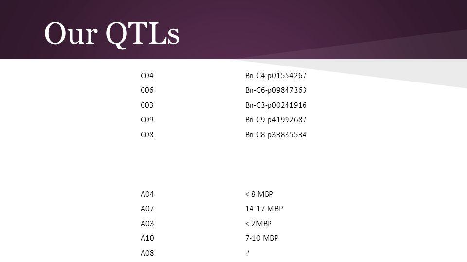 Our QTLs C04Bn-C4-p01554267 C06Bn-C6-p09847363 C03Bn-C3-p00241916 C09Bn-C9-p41992687 C08Bn-C8-p33835534 A04< 8 MBP A0714-17 MBP A03< 2MBP A107-10 MBP