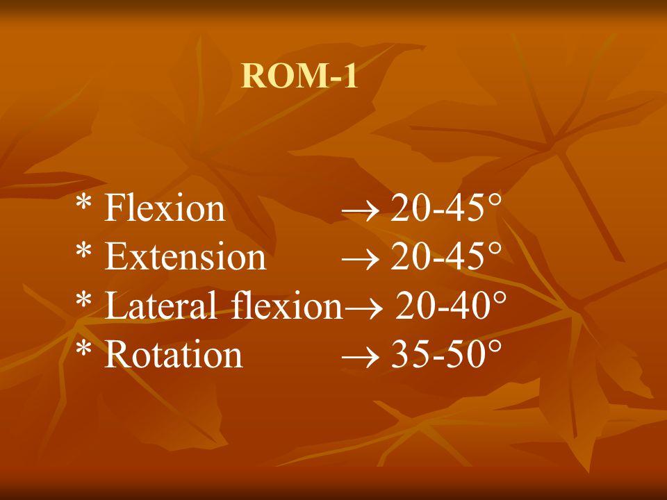 ROM-2 * Sitting position, * C7-T12: 3 sm., C7-S1 15 sm.
