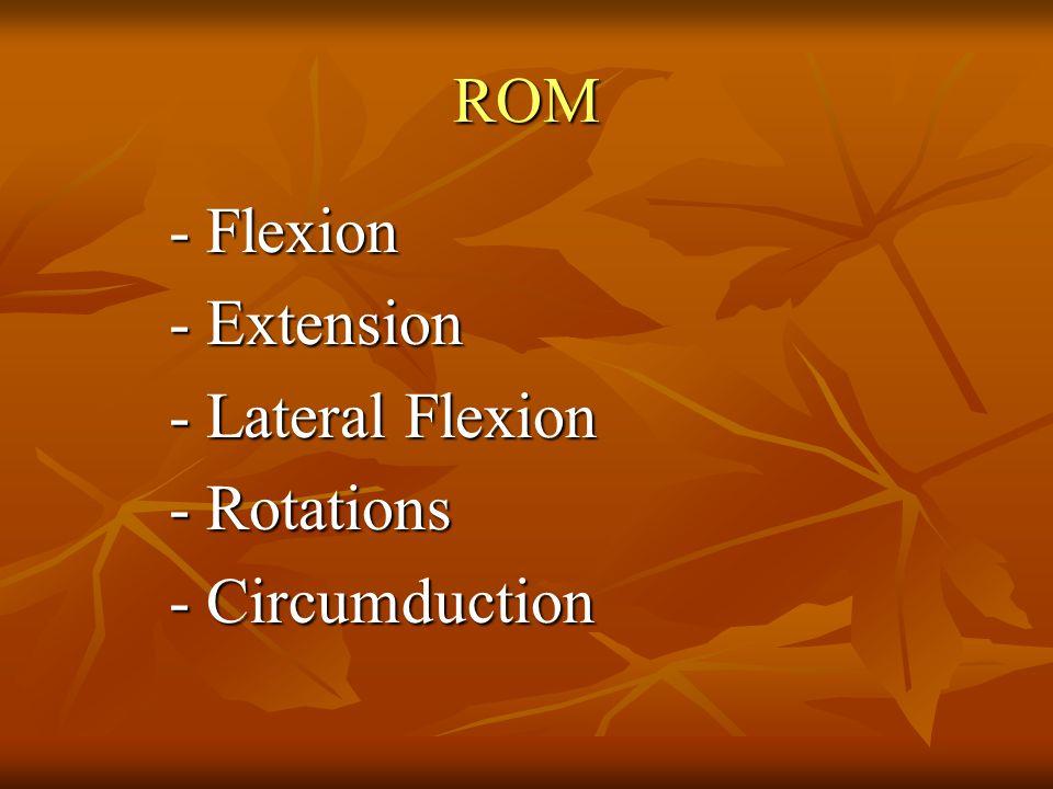 - DTR - Muscle testing - Sensation NEUROLOGIC EXAMINATION
