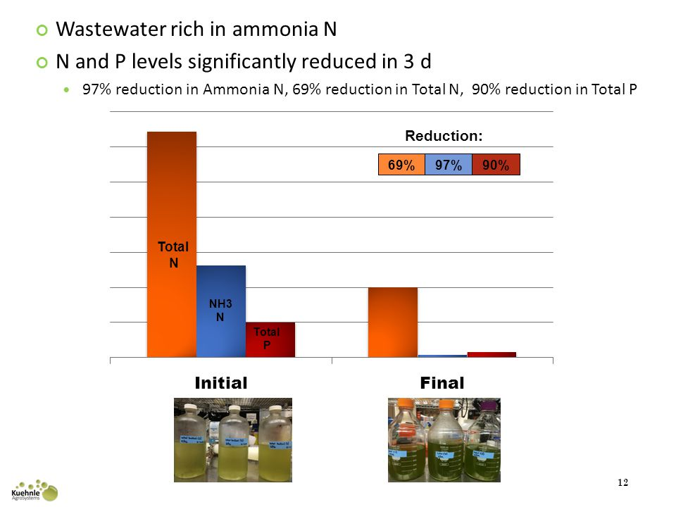 Wastewater rich in ammonia N N and P levels significantly reduced in 3 d 97% reduction in Ammonia N, 69% reduction in Total N, 90% reduction in Total P 12 Total N NH3 N Total P 69% Reduction: 97%90%