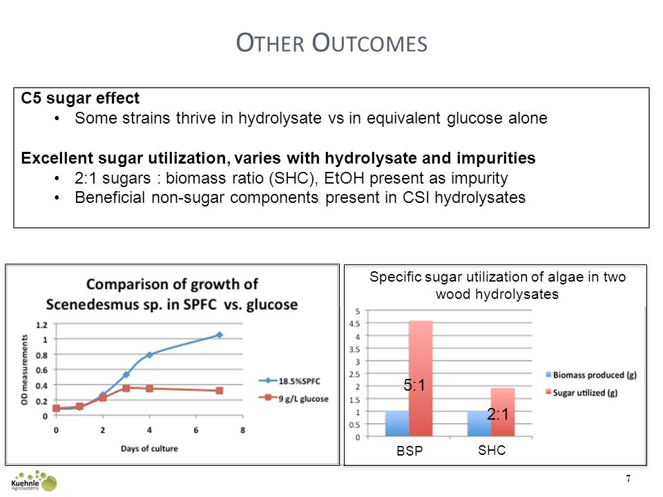 O THER O UTCOMES 7 C5 sugar effect Some strains thrive in hydrolysate vs in equivalent glucose alone Excellent sugar utilization, varies with hydrolysate and impurities 2:1 sugars : biomass ratio (SHC), EtOH present as impurity Beneficial non-sugar components present in CSI hydrolysates SHC BSP Specific sugar utilization of algae in two wood hydrolysates 2:1 5:1