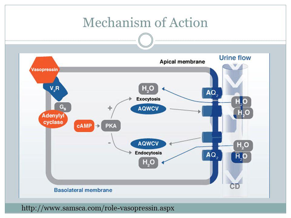 Mechanism of Action http://www.samsca.com/role-vasopressin.aspx