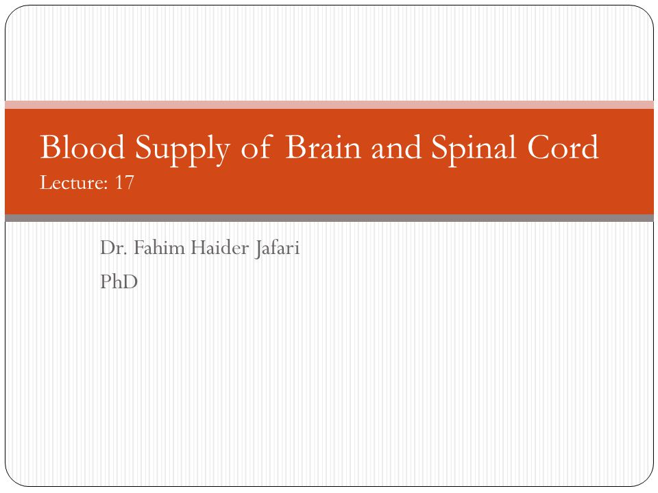 Learning Objectives Enumerate arterial supply of brain Explain division of arterial system in carotid and vertebral systems Enumerate branches of carotid and intervertebral arteries Explain circle of Willis and identify arterial supply of specific brain areas Enumerate veins of brain and spinal cord Identify clinical application