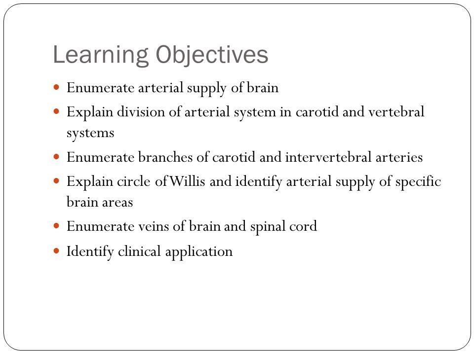 Arterial Supply to Brain