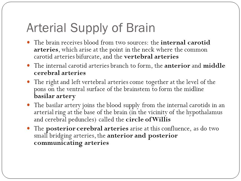 Physiological Significance The arrangement of the brain s arteries into the Circle of Willis creates collaterals in the cerebral circulation If one part of the circle becomes blocked or narrowed (stenosed) or one of the arteries supplying the circle is blocked or narrowed, blood flow from the other blood vessels can often preserve the cerebral perfusion well enough to avoid the symptoms of ischemia