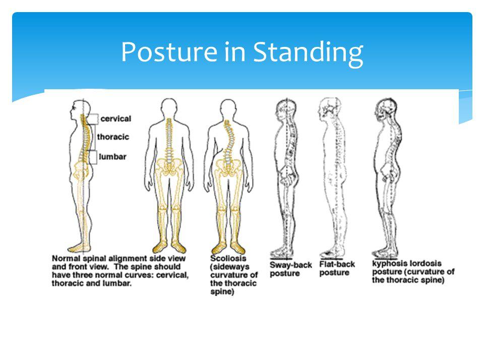Posture in Standing