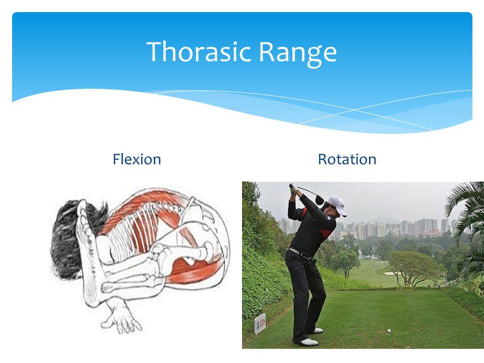 Thorasic Range FlexionRotation