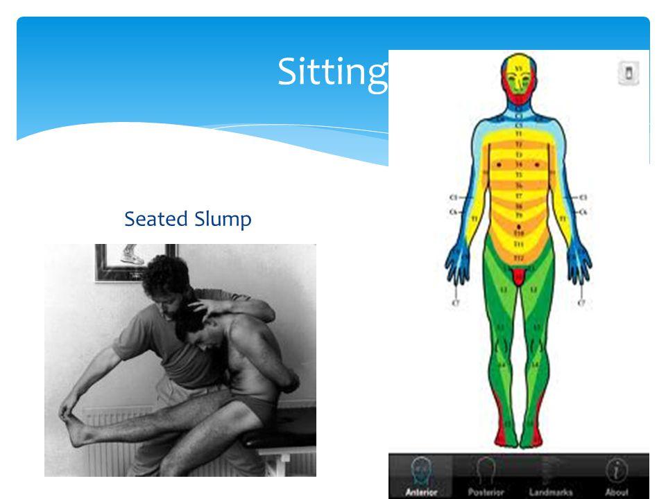 Sitting Seated SlumpDermatomes