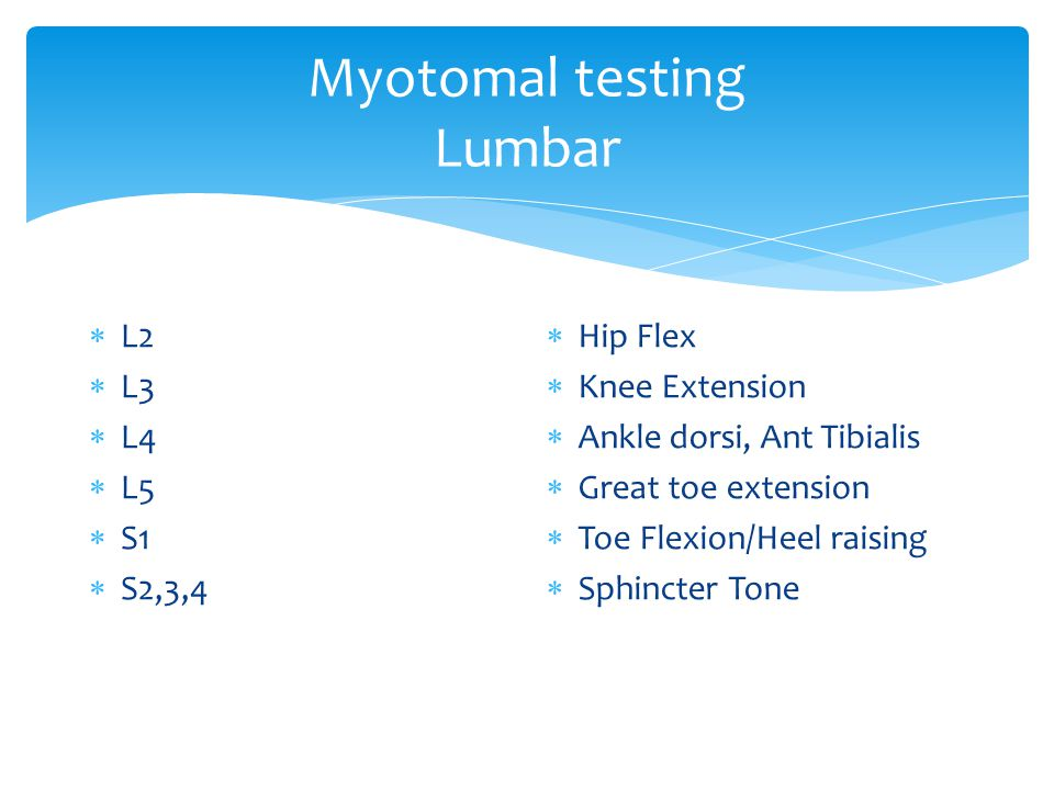 Myotomal testing Lumbar  L2  L3  L4  L5  S1  S2,3,4  Hip Flex  Knee Extension  Ankle dorsi, Ant Tibialis  Great toe extension  Toe Flexion/