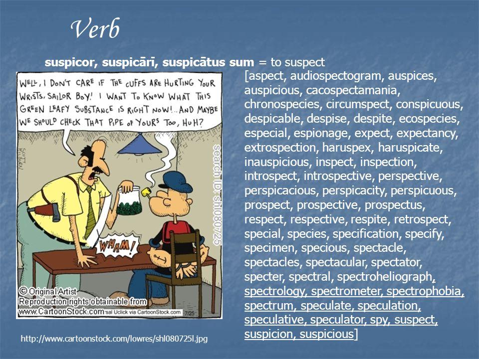 Verb suspicor, suspicārī, suspicātus sum = to suspect [aspect, audiospectogram, auspices, auspicious, cacospectamania, chronospecies, circumspect, conspicuous, despicable, despise, despite, ecospecies, especial, espionage, expect, expectancy, extrospection, haruspex, haruspicate, inauspicious, inspect, inspection, introspect, introspective, perspective, perspicacious, perspicacity, perspicuous, prospect, prospective, prospectus, respect, respective, respite, retrospect, special, species, specification, specify, specimen, specious, spectacle, spectacles, spectacular, spectator, specter, spectral, spectroheliograph, spectrology, spectrometer, spectrophobia, spectrum, speculate, speculation, speculative, speculator, spy, suspect, suspicion, suspicious] http://www.cartoonstock.com/lowres/shl080725l.jpg