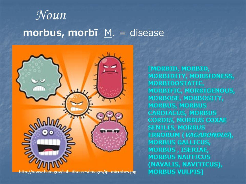 http://www.bam.gov/sub_diseases/images/ip_microbes.jpg Noun morbus, morbī M. = disease
