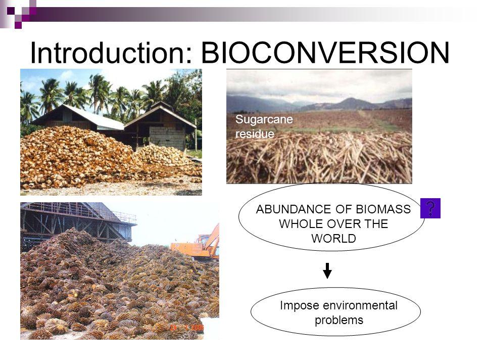 Introduction: BIOCONVERSION ABUNDANCE OF BIOMASS WHOLE OVER THE WORLD Sugarcane residue Impose environmental problems