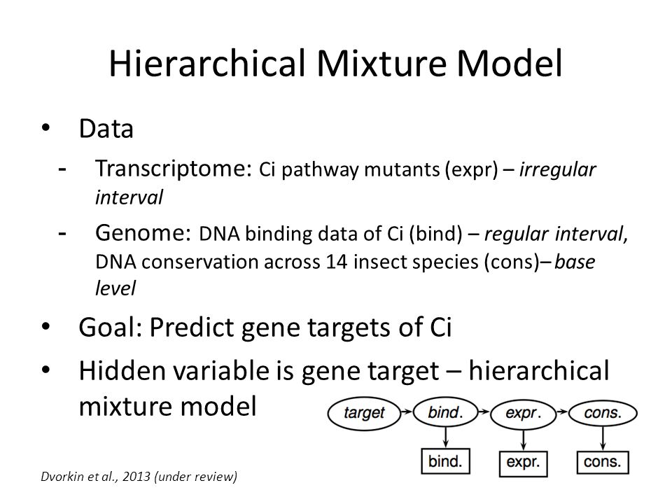 Hierarchical Mixture Model Data -Transcriptome: Ci pathway mutants (expr) – irregular interval -Genome: DNA binding data of Ci (bind) – regular interval, DNA conservation across 14 insect species (cons)– base level Goal: Predict gene targets of Ci Hidden variable is gene target – hierarchical mixture model Dvorkin et al., 2013 (under review)