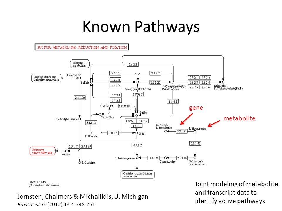 Known Pathways Jornsten, Chalmers & Michailidis, U.