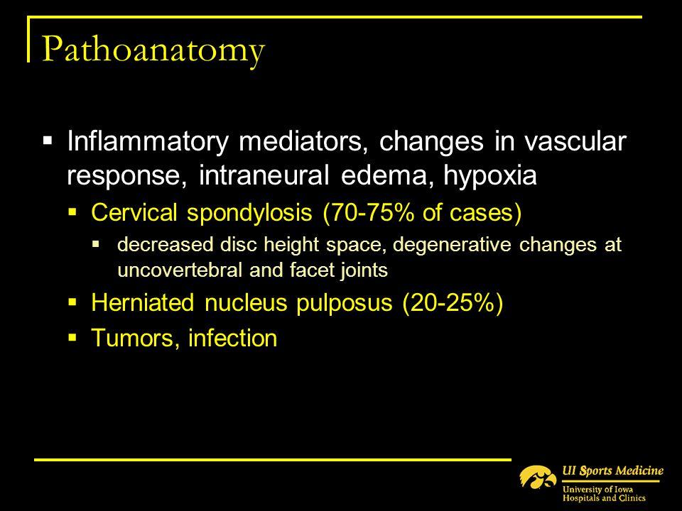 Pathoanatomy  Inflammatory mediators, changes in vascular response, intraneural edema, hypoxia  Cervical spondylosis (70-75% of cases)  decreased d