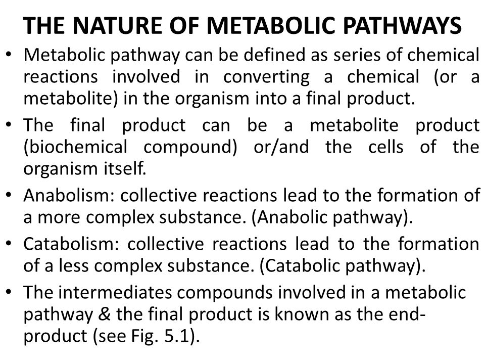 THE NATURE OF METABOLIC PATHWAYS Metabolic pathway can be defined as series of chemical reactions involved in converting a chemical (or a metabolite) in the organism into a final product.