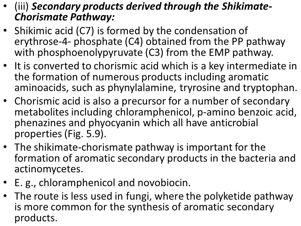 (iii) Secondary products derived through the Shikimate- Chorismate Pathway: Shikimic acid (C7) is formed by the condensation of erythrose-4- phosphate (C4) obtained from the PP pathway with phosphoenolypyruvate (C3) from the EMP pathway.