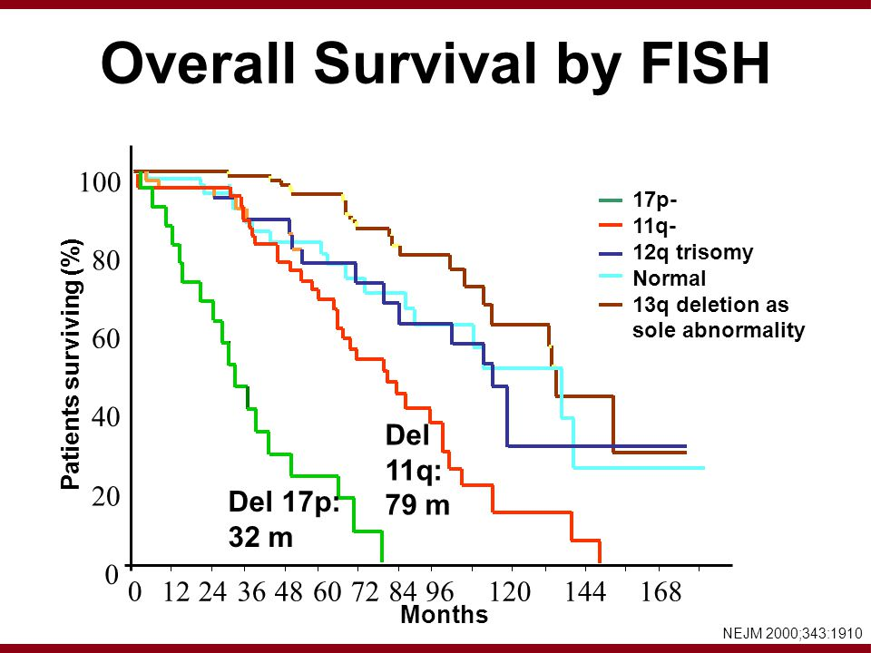 Overall Survival by FISH 100 80 60 40 20 0 0 1224364860728496120144168 Patients surviving (%) Months 17p- 11q- 12q trisomy Normal 13q deletion as sole