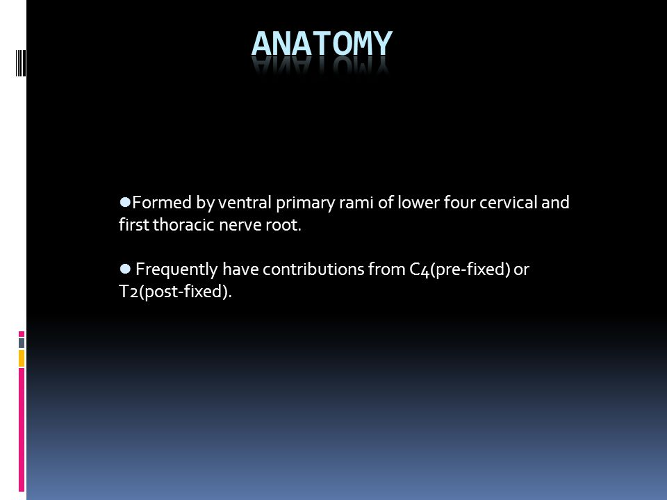 Formed by ventral primary rami of lower four cervical and first thoracic nerve root.