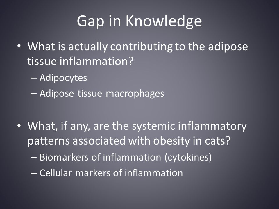 Gap in Knowledge What is actually contributing to the adipose tissue inflammation? – Adipocytes – Adipose tissue macrophages What, if any, are the sys
