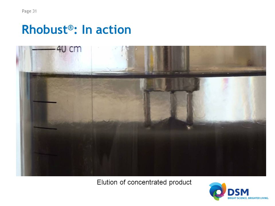 Page 31 Rhobust ® : In action Elution of concentrated product