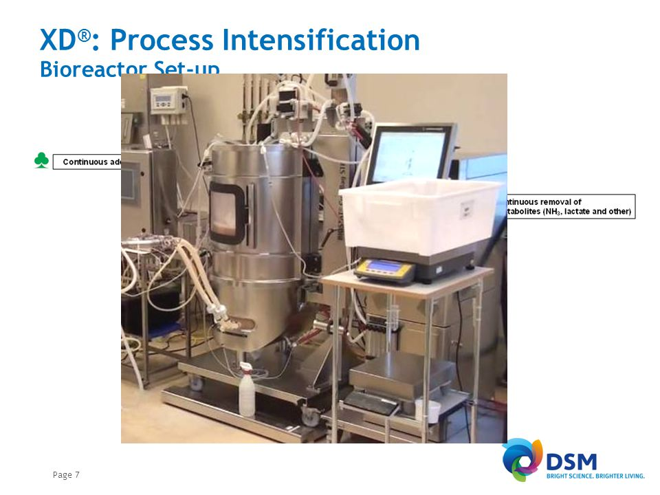 Page 7 XD ® : Process Intensification Bioreactor Set-up
