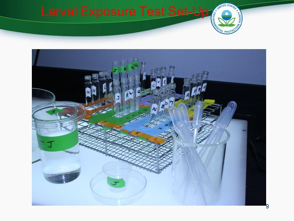 Larval Exposure Test Set-Up 9