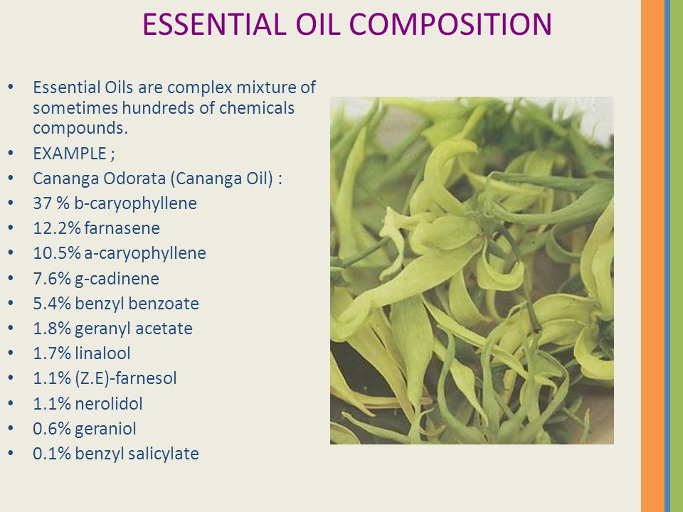 ESSENTIAL OIL COMPOSITION Essential Oils are complex mixture of sometimes hundreds of chemicals compounds. EXAMPLE ; Cananga Odorata (Cananga Oil) : 3