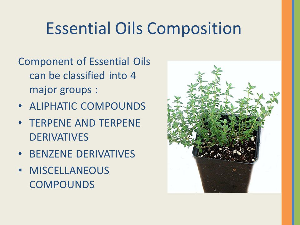 Essential Oils Composition Component of Essential Oils can be classified into 4 major groups : ALIPHATIC COMPOUNDS TERPENE AND TERPENE DERIVATIVES BEN