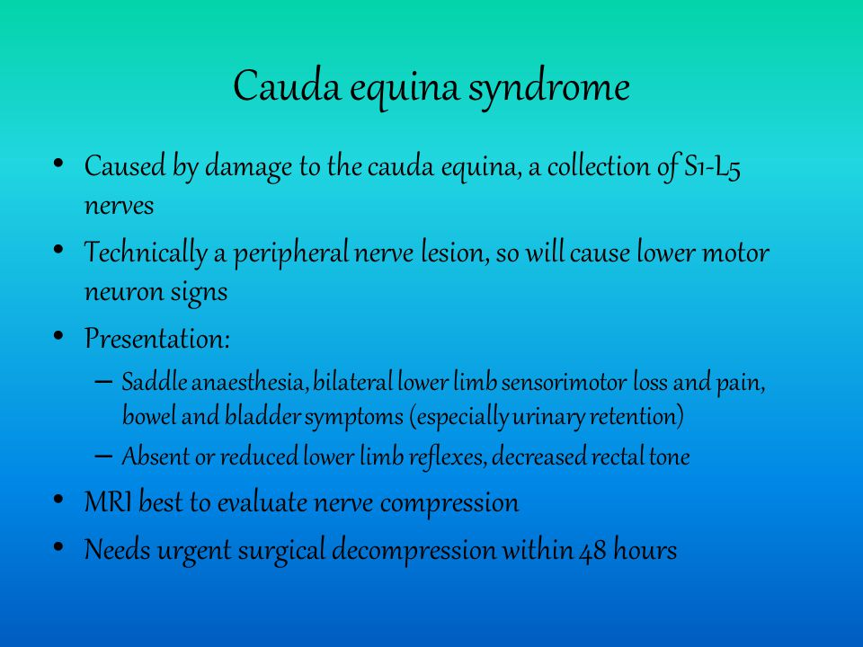 Cauda equina syndrome Caused by damage to the cauda equina, a collection of S1-L5 nerves Technically a peripheral nerve lesion, so will cause lower motor neuron signs Presentation: – Saddle anaesthesia, bilateral lower limb sensorimotor loss and pain, bowel and bladder symptoms (especially urinary retention) – Absent or reduced lower limb reflexes, decreased rectal tone MRI best to evaluate nerve compression Needs urgent surgical decompression within 48 hours