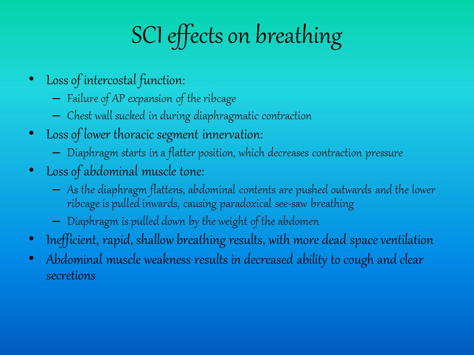 SCI effects on breathing Loss of intercostal function: – Failure of AP expansion of the ribcage – Chest wall sucked in during diaphragmatic contraction Loss of lower thoracic segment innervation: – Diaphragm starts in a flatter position, which decreases contraction pressure Loss of abdominal muscle tone: – As the diaphragm flattens, abdominal contents are pushed outwards and the lower ribcage is pulled inwards, causing paradoxical see-saw breathing – Diaphragm is pulled down by the weight of the abdomen Inefficient, rapid, shallow breathing results, with more dead space ventilation Abdominal muscle weakness results in decreased ability to cough and clear secretions