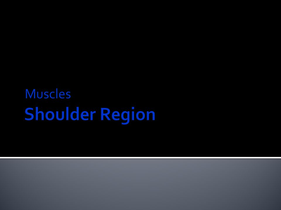 Origin: Middle part of lateral border of scapula  Insertion: Inferior facet of greater tubercle of humerus  N.