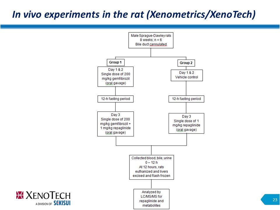 In vivo experiments in the rat (Xenometrics/XenoTech) 23