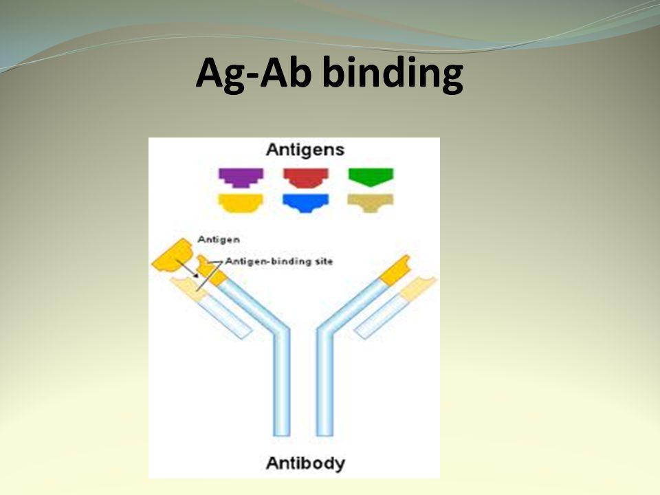 Ag-Ab binding