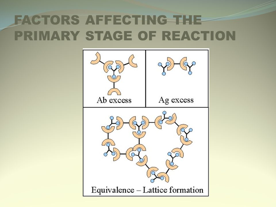 FACTORS AFFECTING THE PRIMARY STAGE OF REACTION
