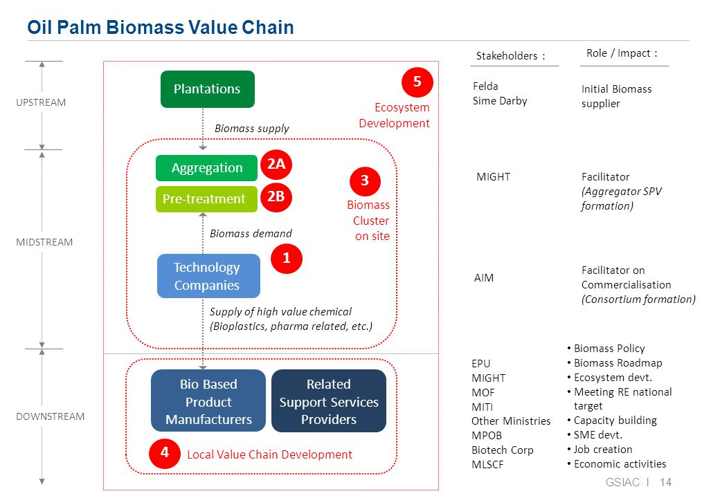 14 Oil Palm Biomass Value Chain Bio Based Product Manufacturers Biomass Policy Biomass Roadmap Ecosystem devt.