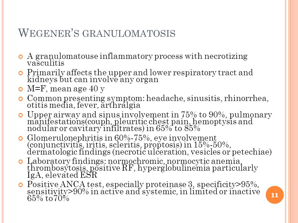 W EGENER ' S GRANULOMATOSIS A granulomatouse inflammatory process with necrotizing vasculitis Primarily affects the upper and lower respiratory tract