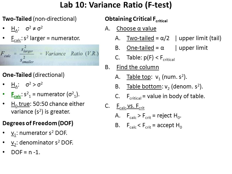 Lab 10: Variance Ratio (F-test) Two-Tailed (non-directional) H A :σ 2 ≠ σ 2 F calc : s 2 larger = numerator.