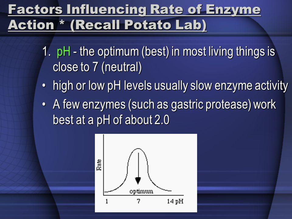 Factors Influencing Rate of Enzyme Action * (Recall Potato Lab) 1. pH - the optimum (best) in most living things is close to 7 (neutral) high or low p