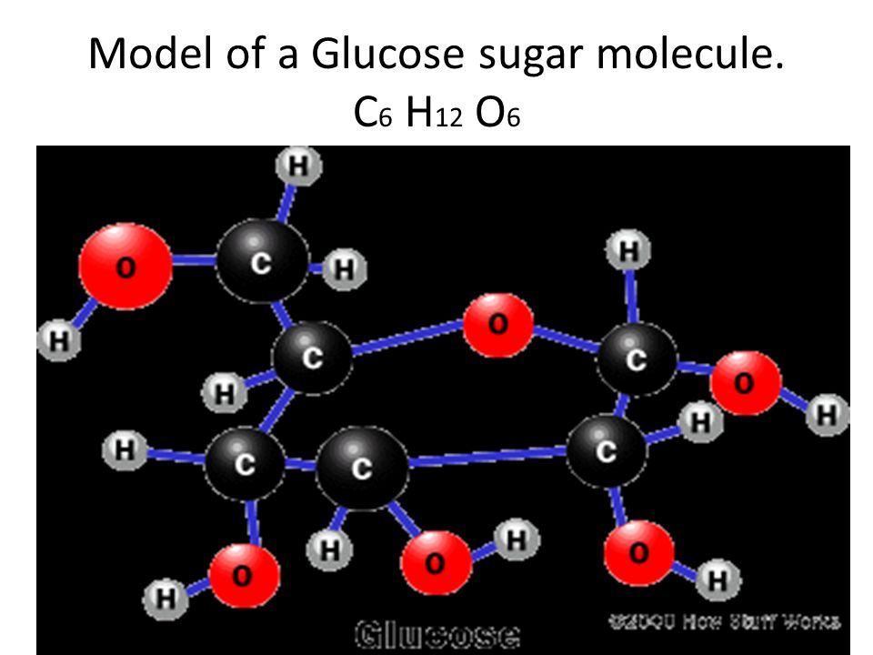 Model of a Glucose sugar molecule. C 6 H 12 O 6