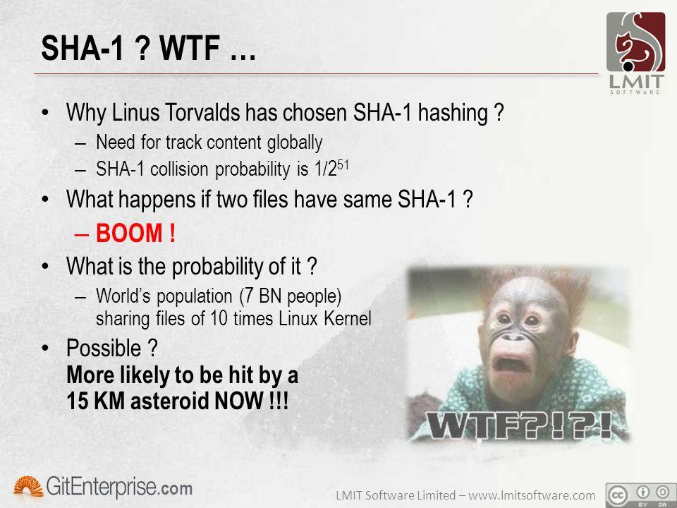 LMIT Software Limited – www.lmitsoftware.com.com SHA-1 .