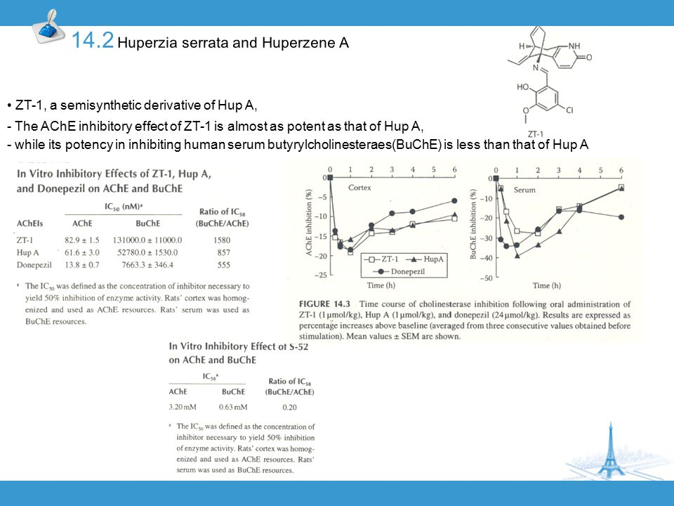 ZT-1, a semisynthetic derivative of Hup A, - The AChE inhibitory effect of ZT-1 is almost as potent as that of Hup A, - while its potency in inhibiting human serum butyrylcholinesteraes(BuChE) is less than that of Hup A