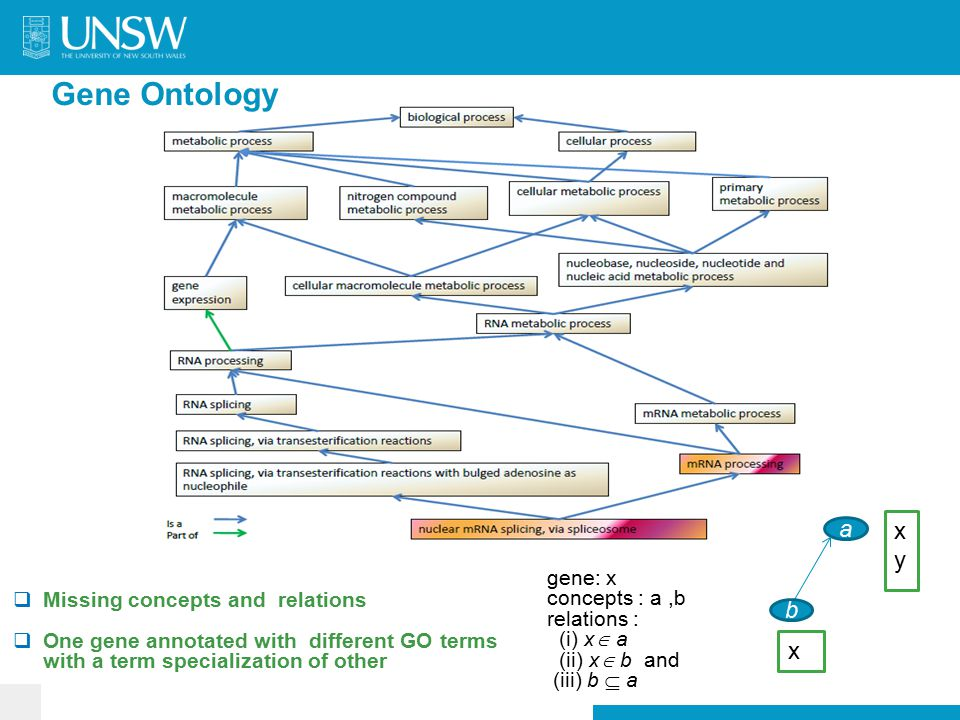 Gene Ontology  Missing concepts and relations  One gene annotated with different GO terms with a term specialization of other a b xyxy x gene: x concepts : a,b relations : (i) x  a (ii) x  b and (iii) b  a