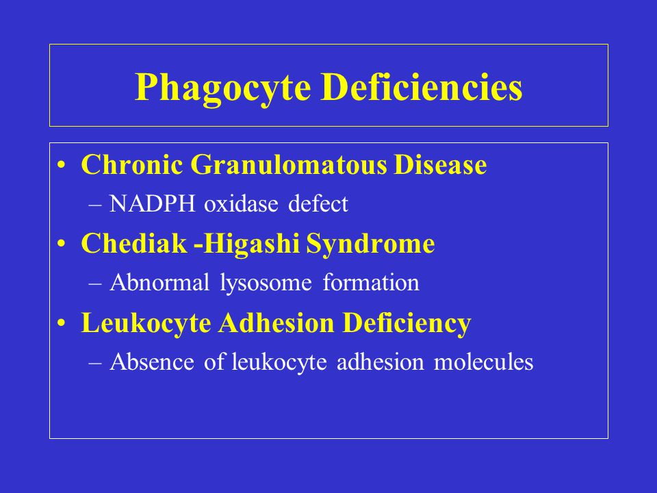 Phagocyte Deficiencies Chronic Granulomatous Disease –NADPH oxidase defect Chediak -Higashi Syndrome –Abnormal lysosome formation Leukocyte Adhesion Deficiency –Absence of leukocyte adhesion molecules