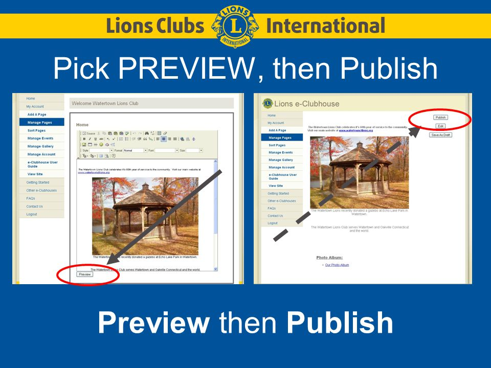 Pick PREVIEW, then Publish Preview then Publish
