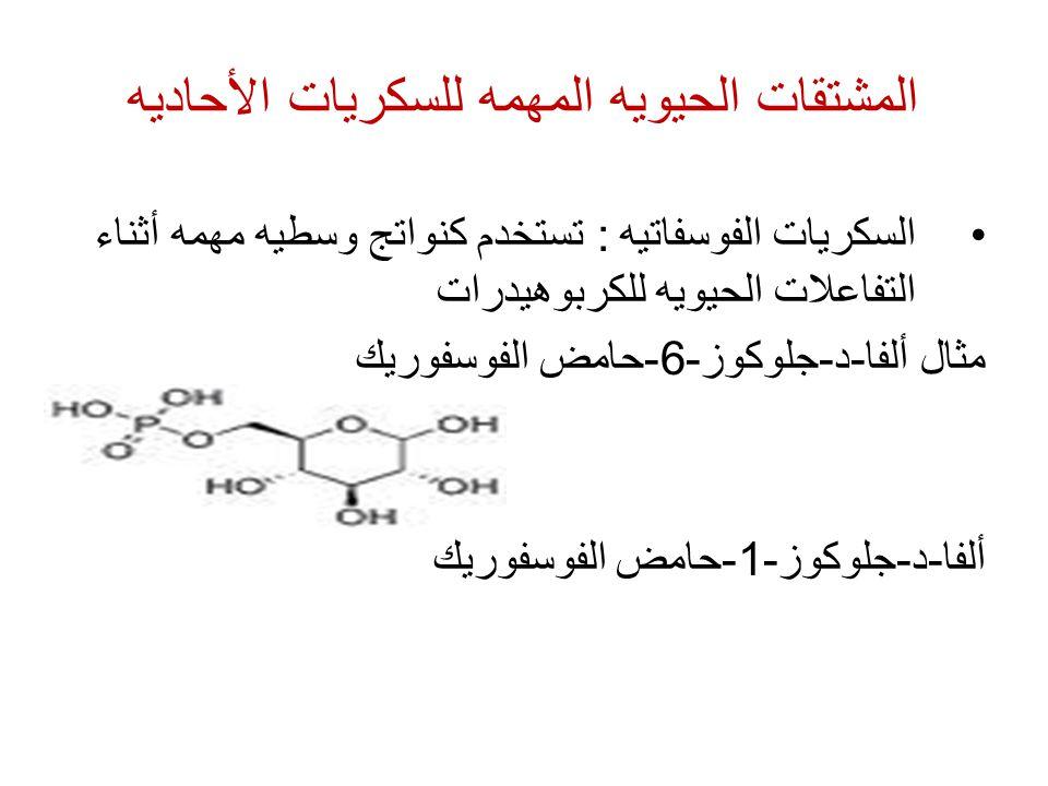 المشتقات الحيويه المهمه للسكريات الأحاديه السكريات الفوسفاتيه : تستخدم كنواتج وسطيه مهمه أثناء التفاعلات الحيويه للكربوهيدرات مثال ألفا-د-جلوكوز-6-حام