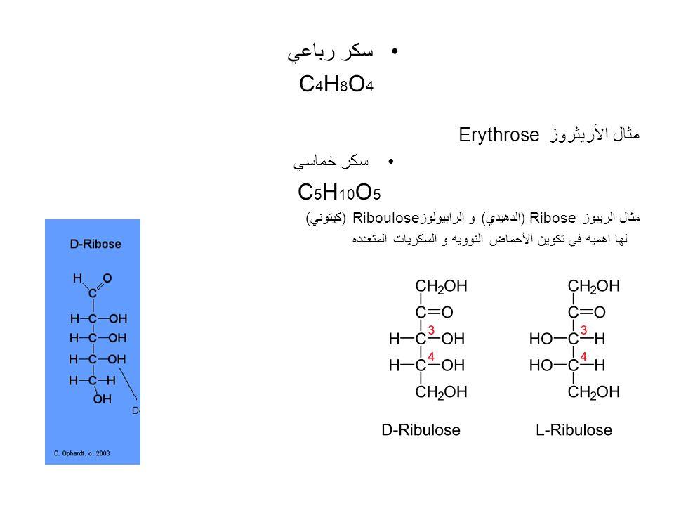 سكر رباعي C 4 H 8 O 4 مثال الأريثروز Erythrose سكر خماسي C 5 H 10 O 5 مثال الريبوز Ribose (الدهيدي) و الرابيولوزRiboulose (كيتوني) لها اهميه في تكوين