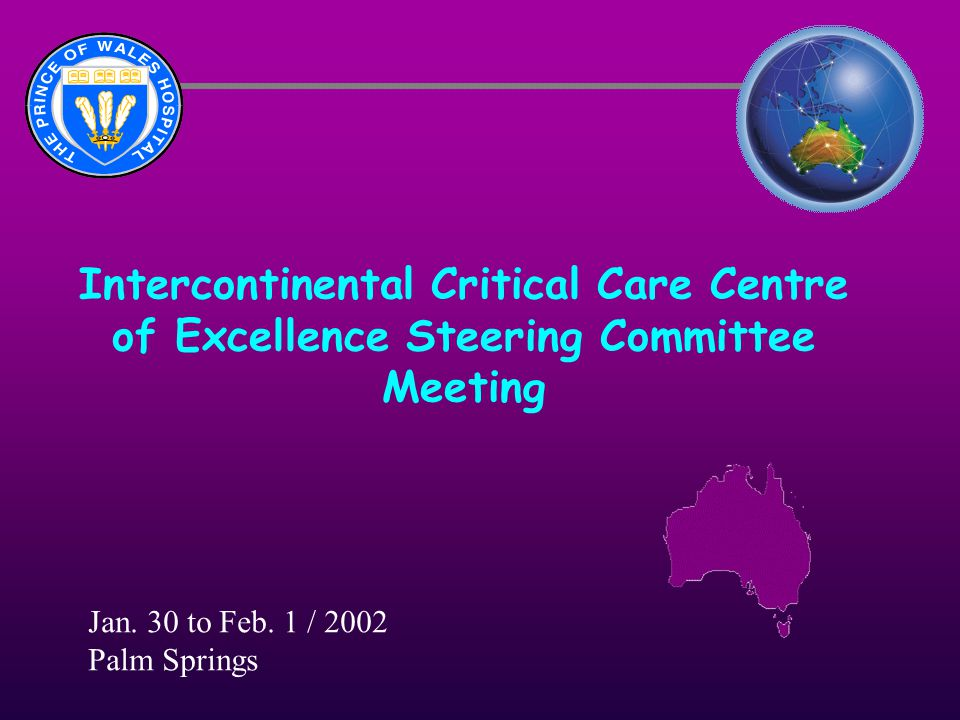 Intercontinental Critical Care Centre of Excellence Steering Committee Meeting Jan. 30 to Feb. 1 / 2002 Palm Springs