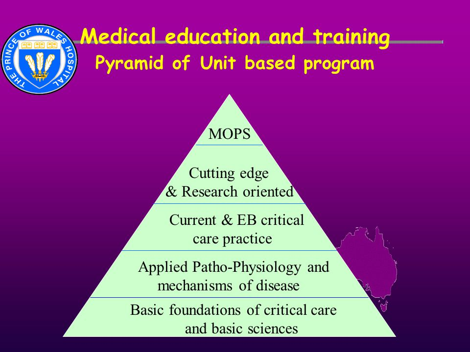 Medical education and training Pyramid of Unit based program Basic foundations of critical care and basic sciences Applied Patho-Physiology and mechan